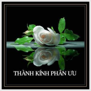 ThanhKinhPhanUu-CT