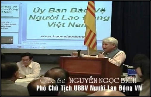 GSNguyenNgocBich-UyBanBaoVeNguoiLaoDongVN2012