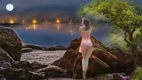 Tinh Trang 03