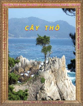 Cay tho 01
