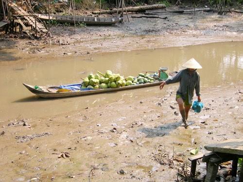 Song Mekong dang lam nguy 04