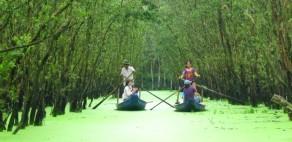 Song Mekong dang lam nguy 08