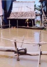 Song Mekong dang lam nguy 11