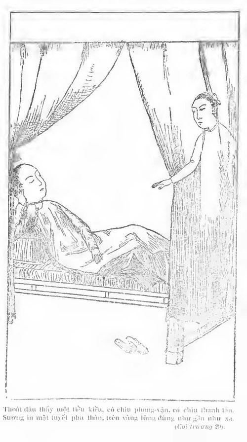 Kieu PK 1911 032