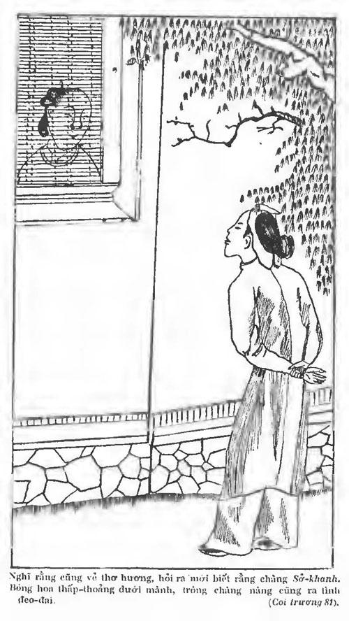 Kieu PK 1911 072