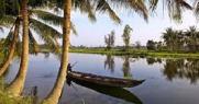 Ngong ban phuong troi 03