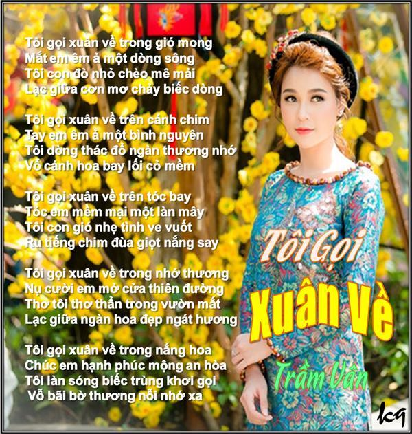 Toi Goi Xuan Ve_TV.jpg