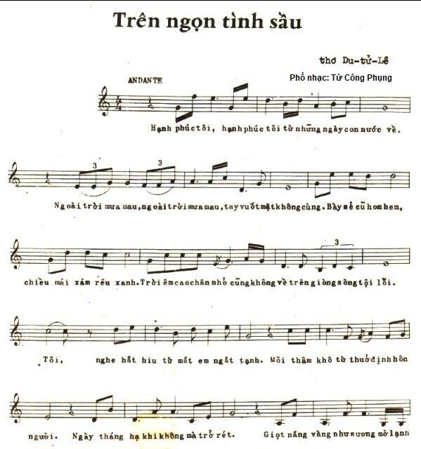 TrenNgonTinhSau-DTL-TCP-p1