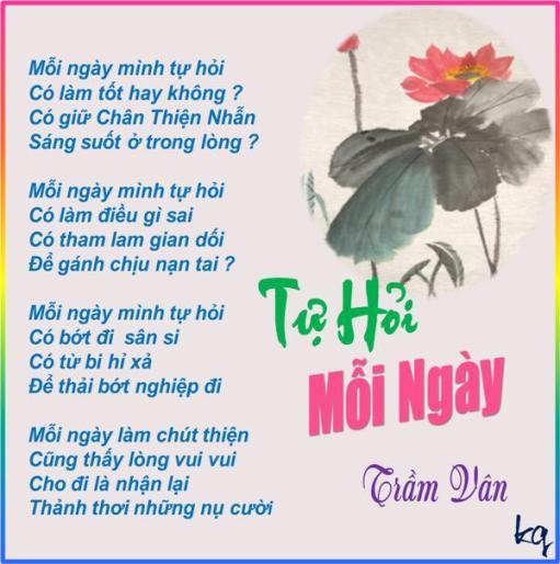 Tu Hoi Moi Ngay_TV.jpg