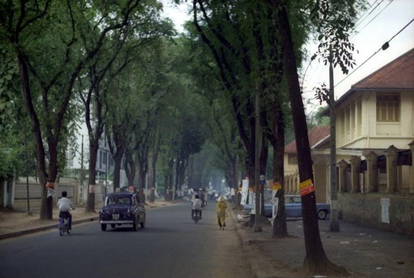 la nguoi Saigon 01