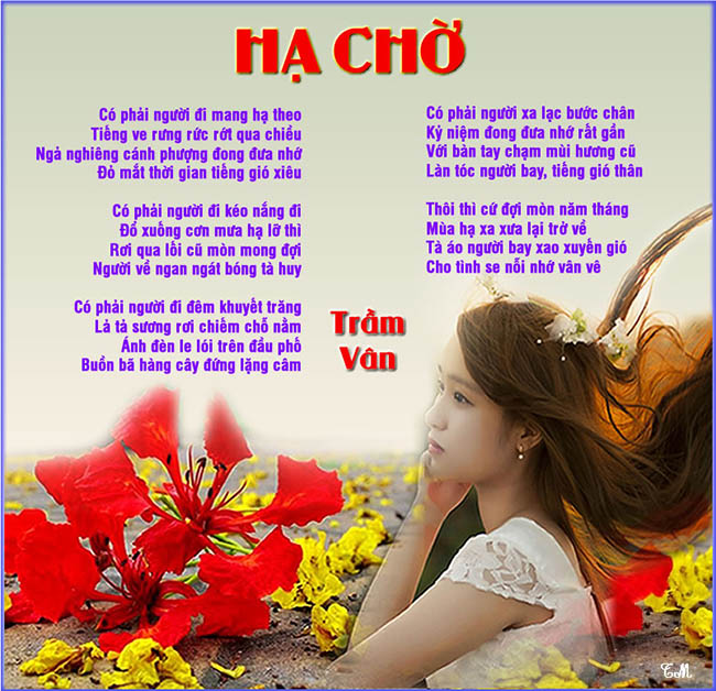 ha cho 01