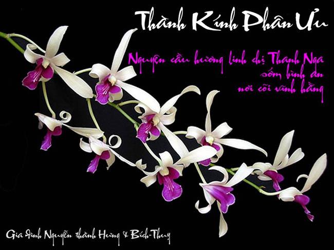 Hung Thuy - Phan Uu